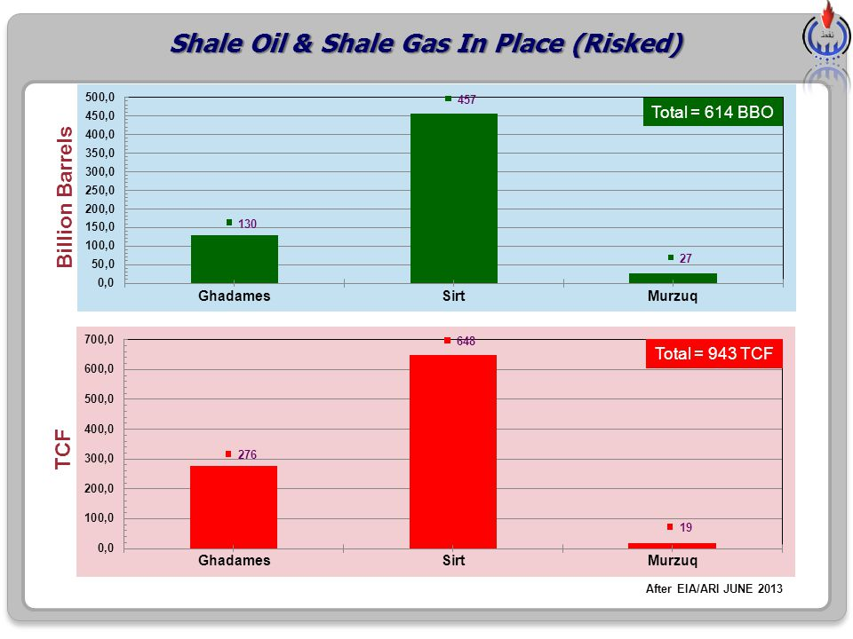 Shale Oil & Shale Gas In Place (Risked)
