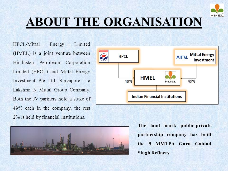 ABOUT THE ORGANISATION
