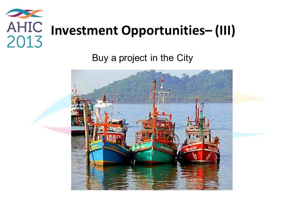 Investment Opportunities– (III)