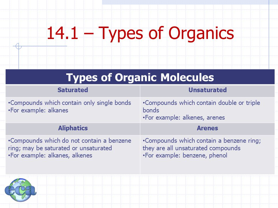 Types of Organic Molecules