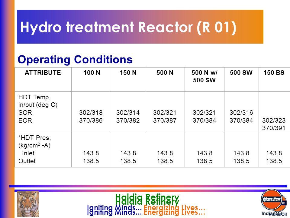 Hydro treatment Reactor (R 01)