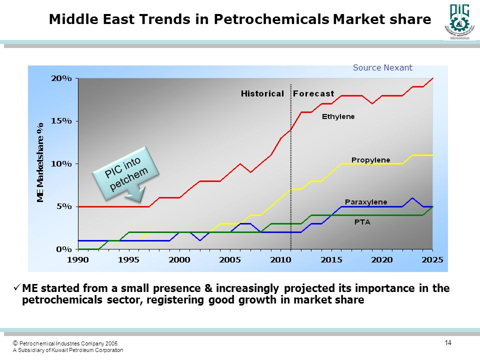 Middle East Trends in Petrochemicals Market share