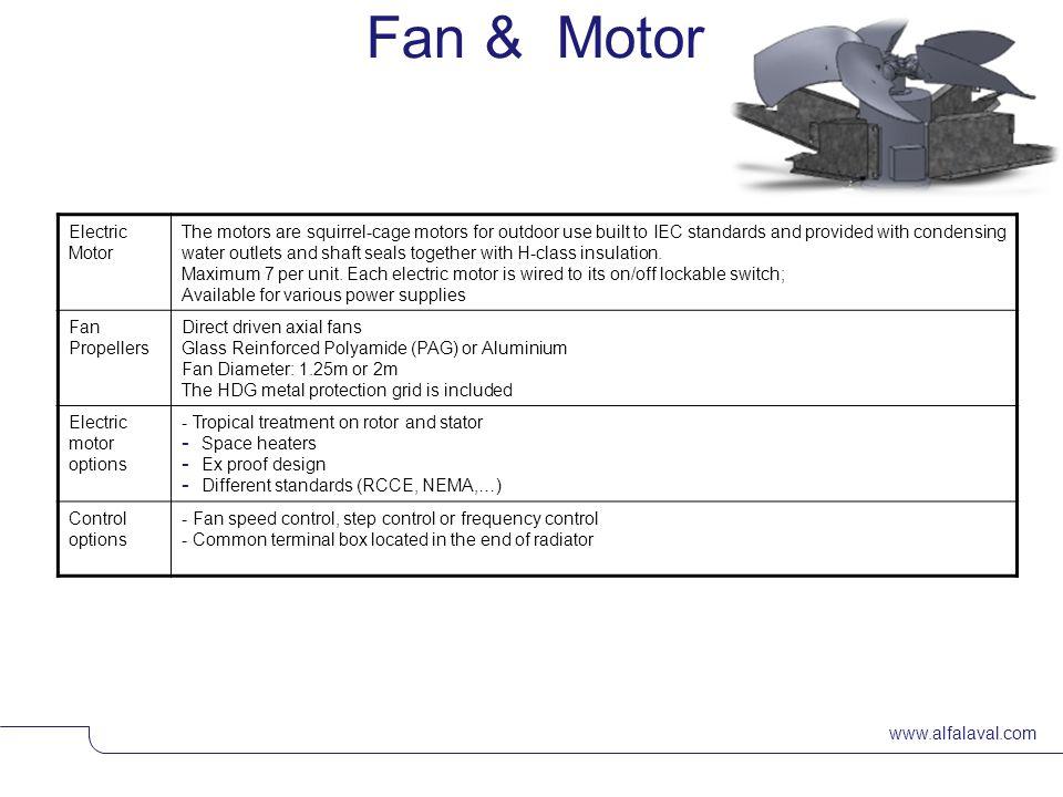 Fan & Motor Electric Motor