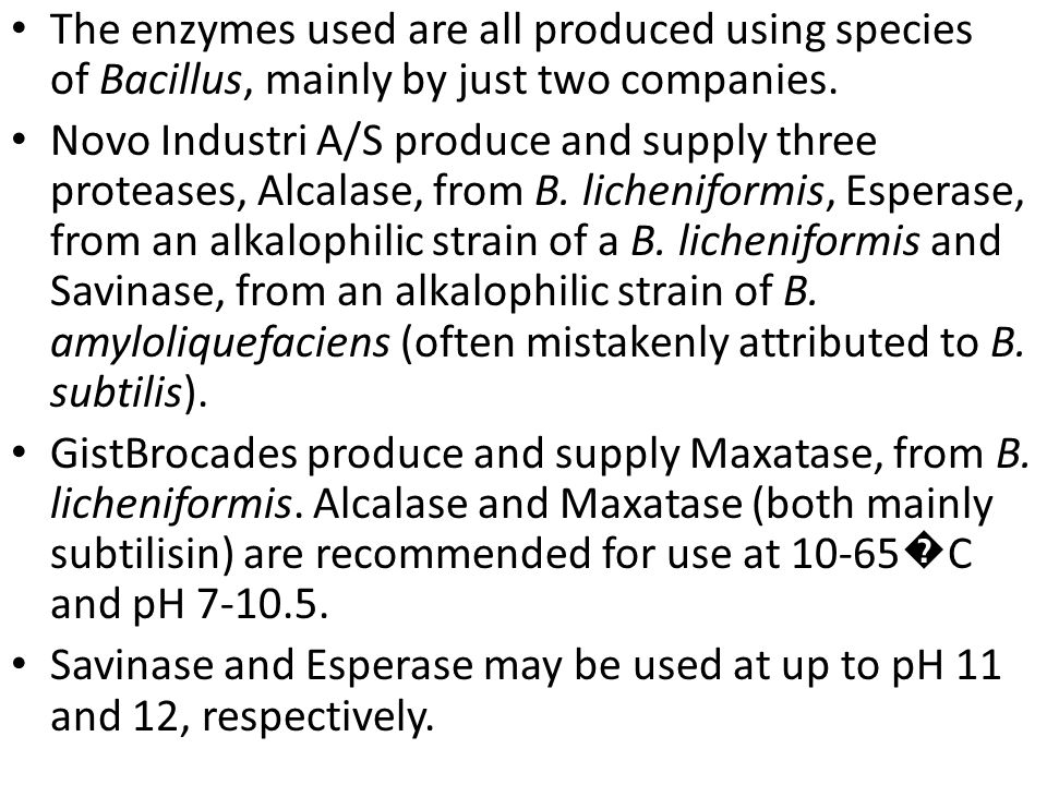 The enzymes used are all produced using species of Bacillus, mainly by just two companies.