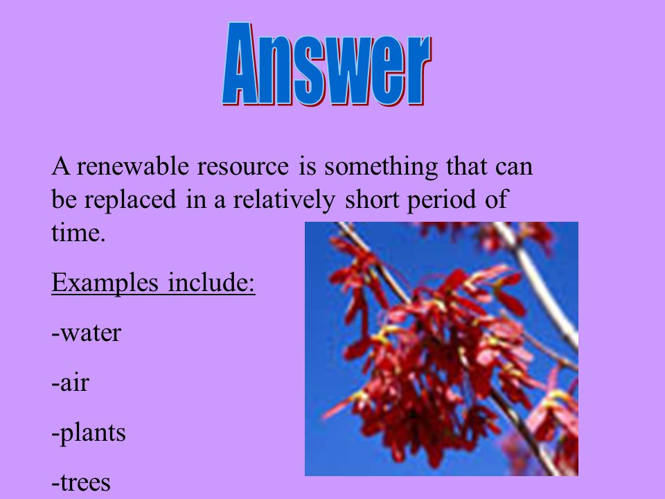 Answer A renewable resource is something that can be replaced in a relatively short period of time.