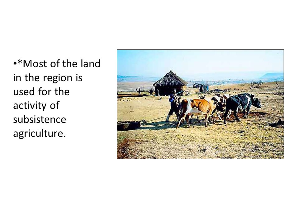 *Most of the land in the region is used for the activity of subsistence agriculture.