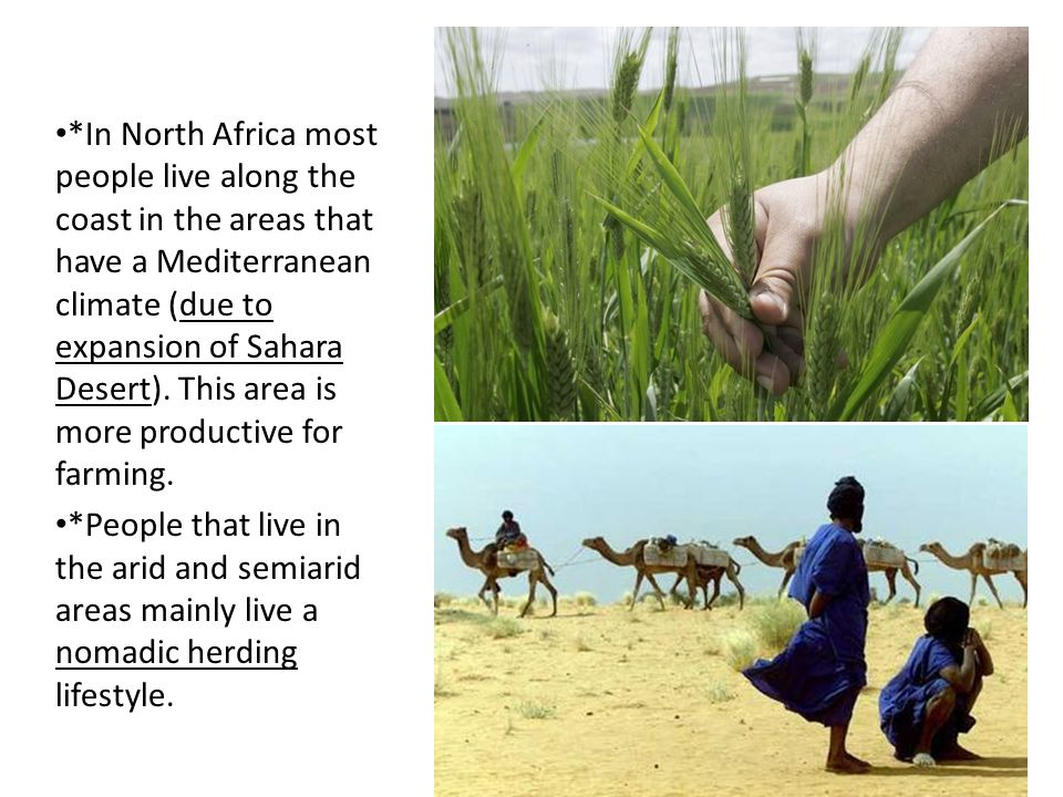 *In North Africa most people live along the coast in the areas that have a Mediterranean climate (due to expansion of Sahara Desert). This area is more productive for farming.