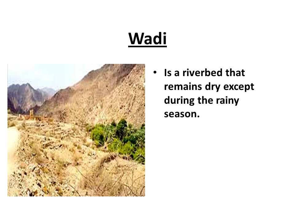 Wadi Is a riverbed that remains dry except during the rainy season.
