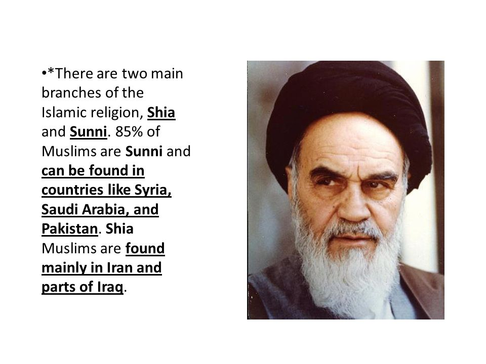 There are two main branches of the Islamic religion, Shia and Sunni