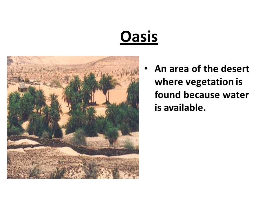 Oasis An area of the desert where vegetation is found because water is available.