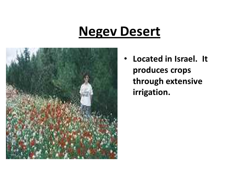 Negev Desert Located in Israel. It produces crops through extensive irrigation.