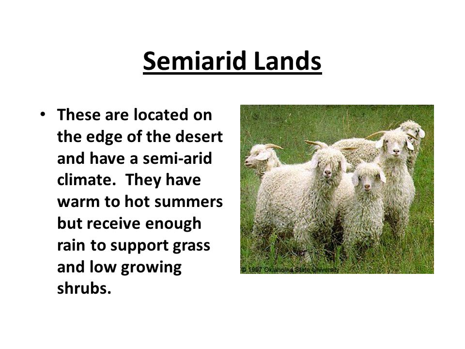 Semiarid Lands