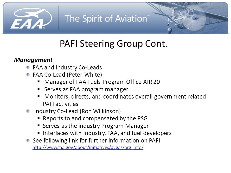 PAFI Steering Group Cont.