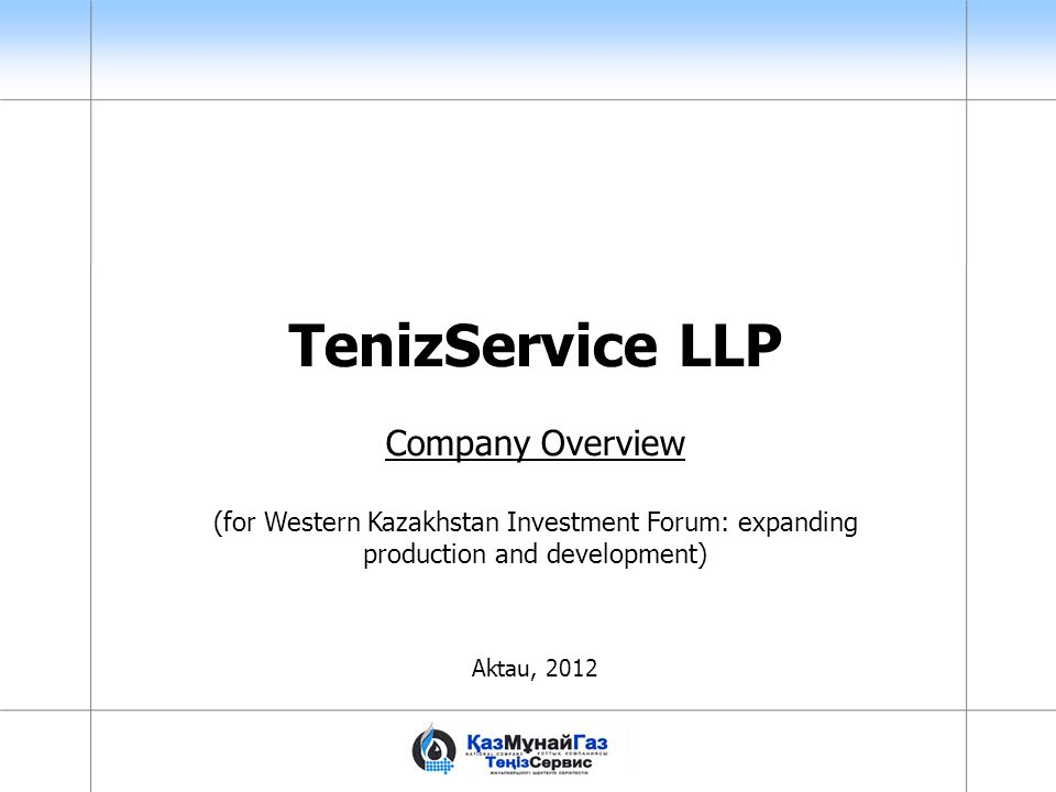 TenizService LLP Company Overview
