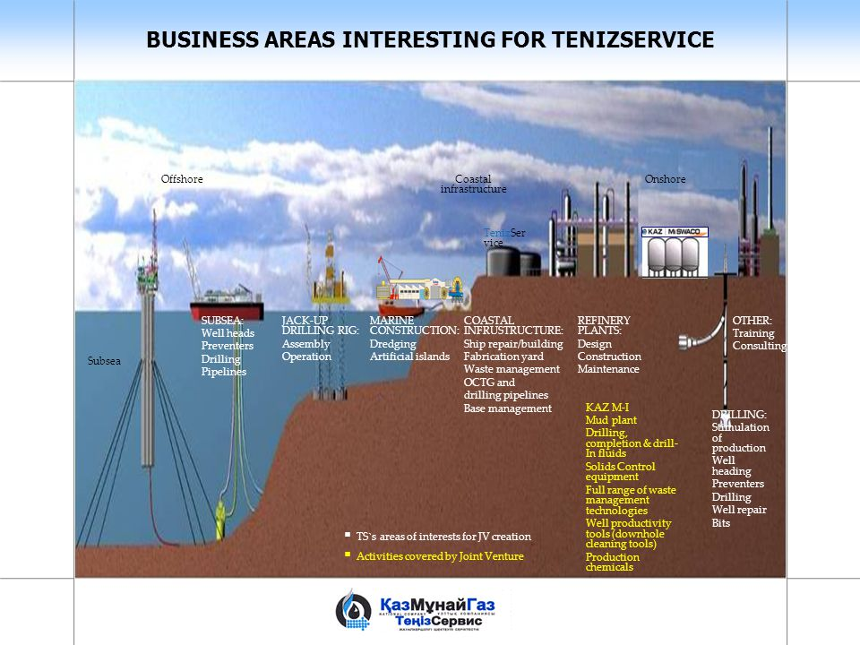 BUSINESS AREAS INTERESTING FOR TENIZSERVICE