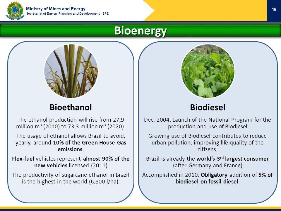 Bioenergy Bioethanol Biodiesel