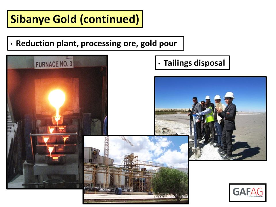Sibanye Gold (continued)