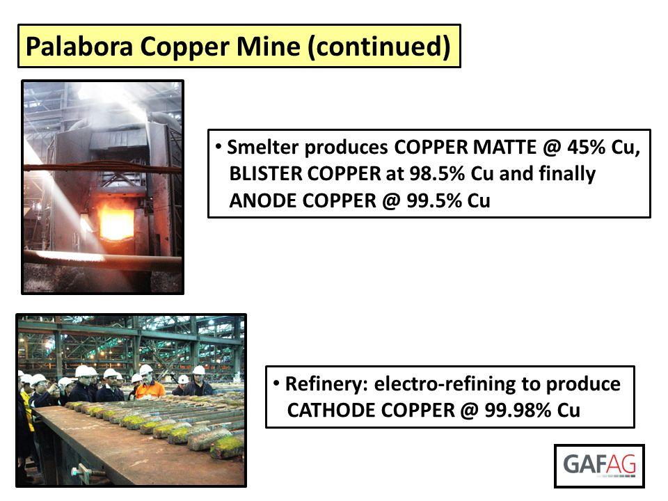 Palabora Copper Mine (continued)
