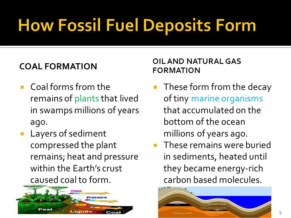 How Fossil Fuel Deposits Form