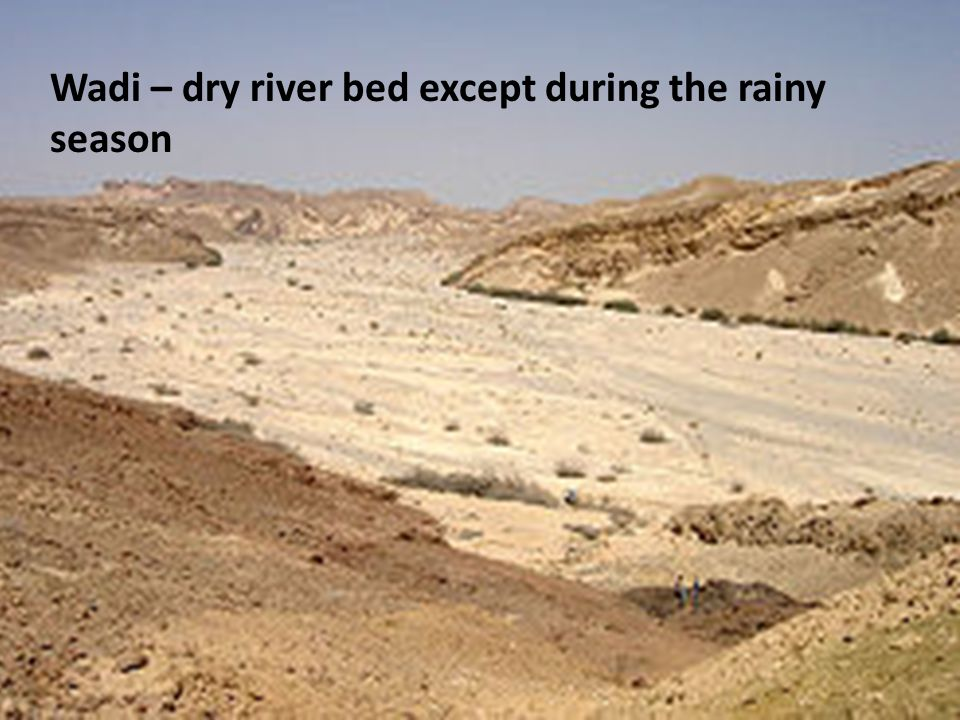 Wadi – dry river bed except during the rainy season