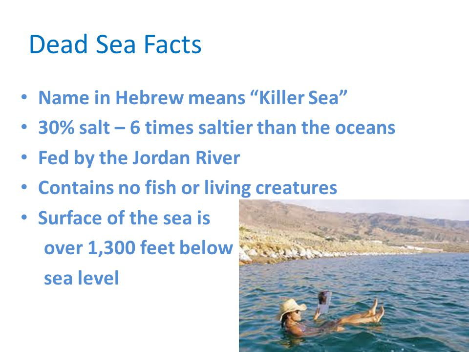 Dead Sea Facts Name in Hebrew means Killer Sea
