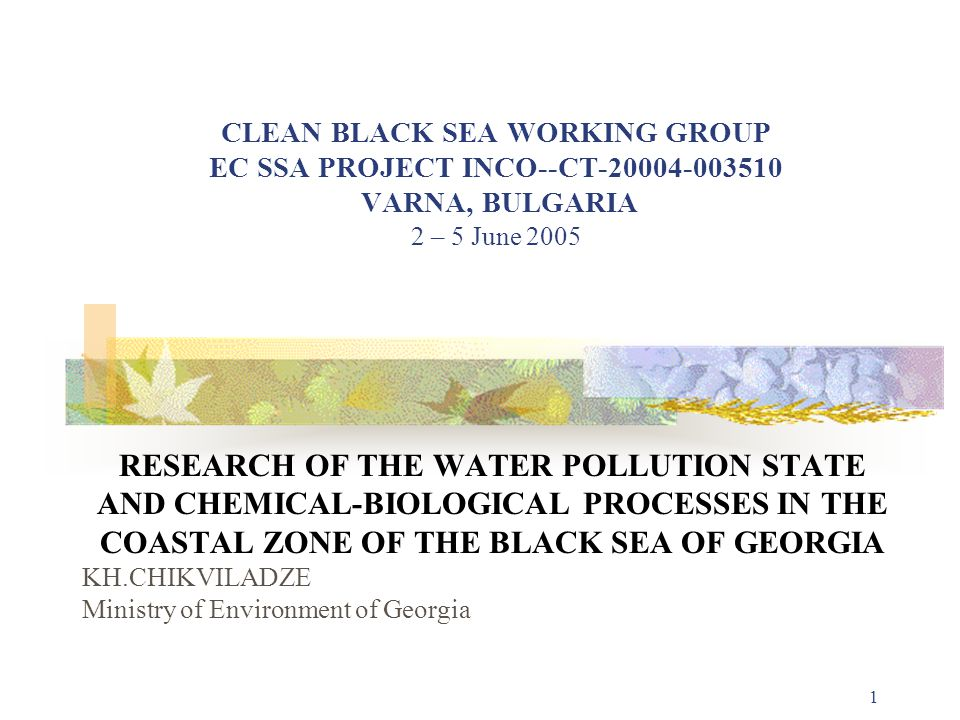 CLEAN BLACK SEA WORKING GROUP EC SSA PROJECT INCO--CT-20004-003510 VARNA, BULGARIA 2 – 5 June 2005
