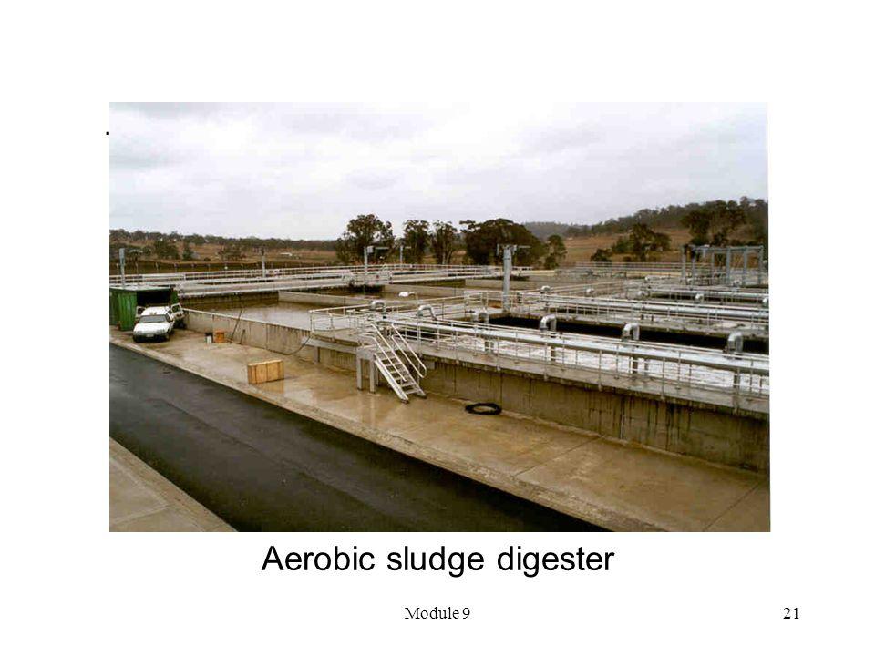 Aerobic sludge digester