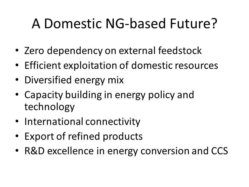 A Domestic NG-based Future