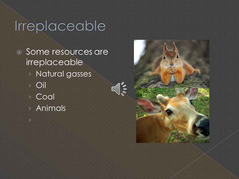 Irreplaceable Some resources are irreplaceable Natural gasses Oil Coal