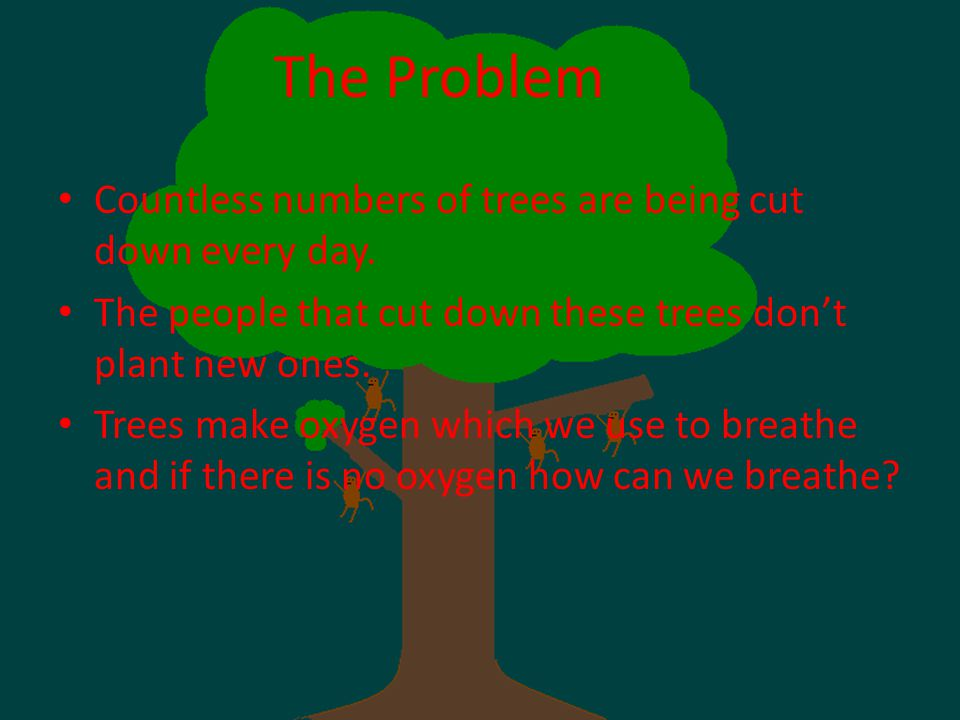 The Problem Countless numbers of trees are being cut down every day.