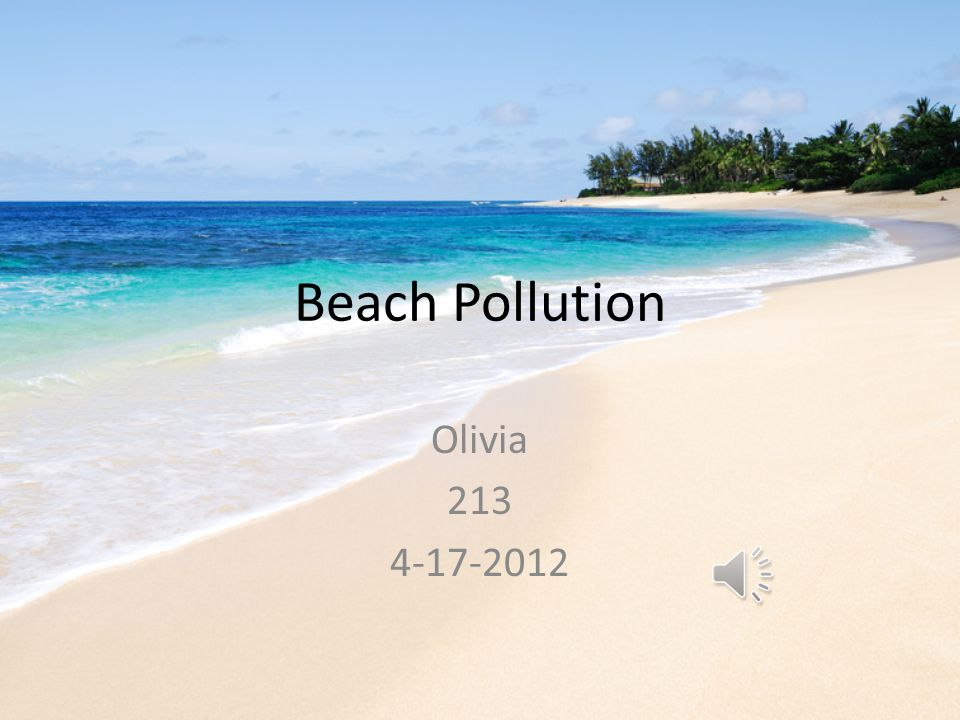 Beach Pollution Olivia 213 4-17-2012