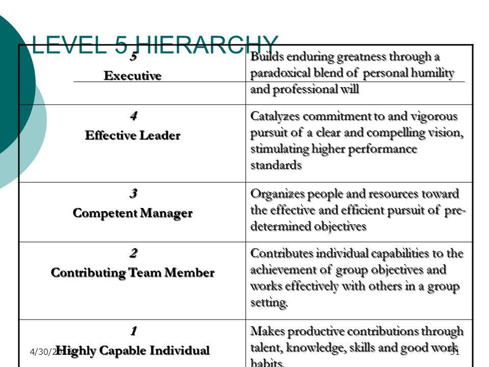 LEVEL 5 HIERARCHY 5 Executive