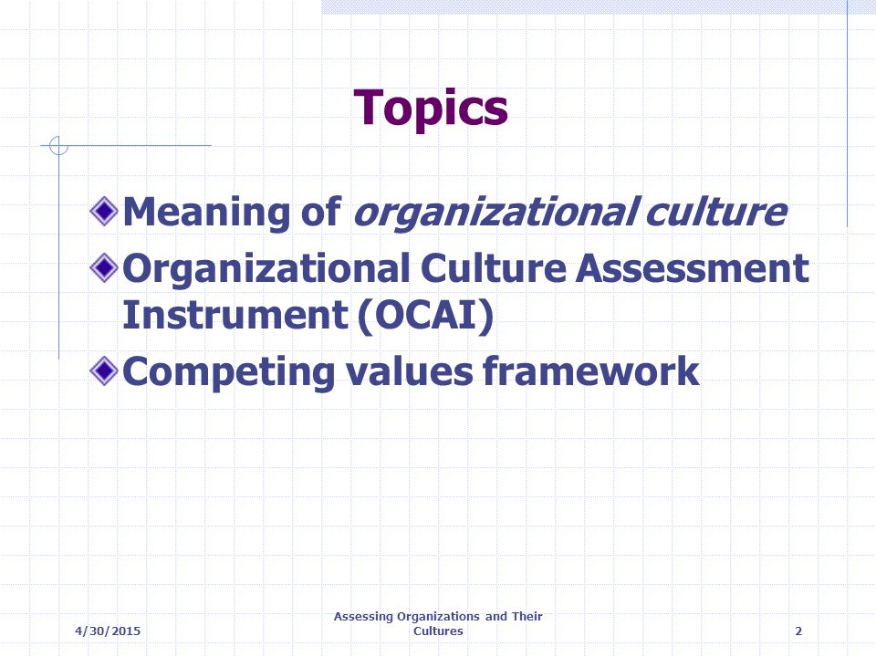 Assessing Organizations and Their Cultures