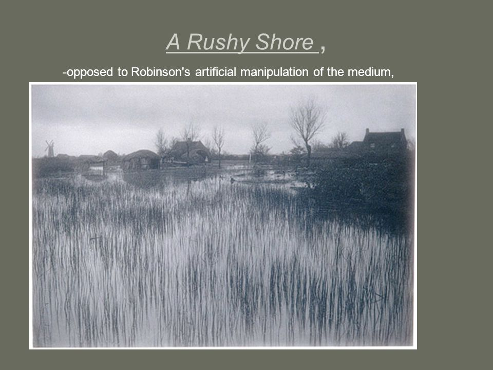 A Rushy Shore , -opposed to Robinson s artificial manipulation of the medium,