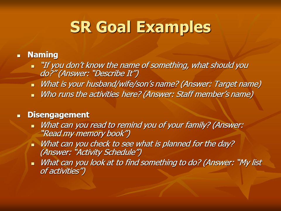SR Goal Examples Naming