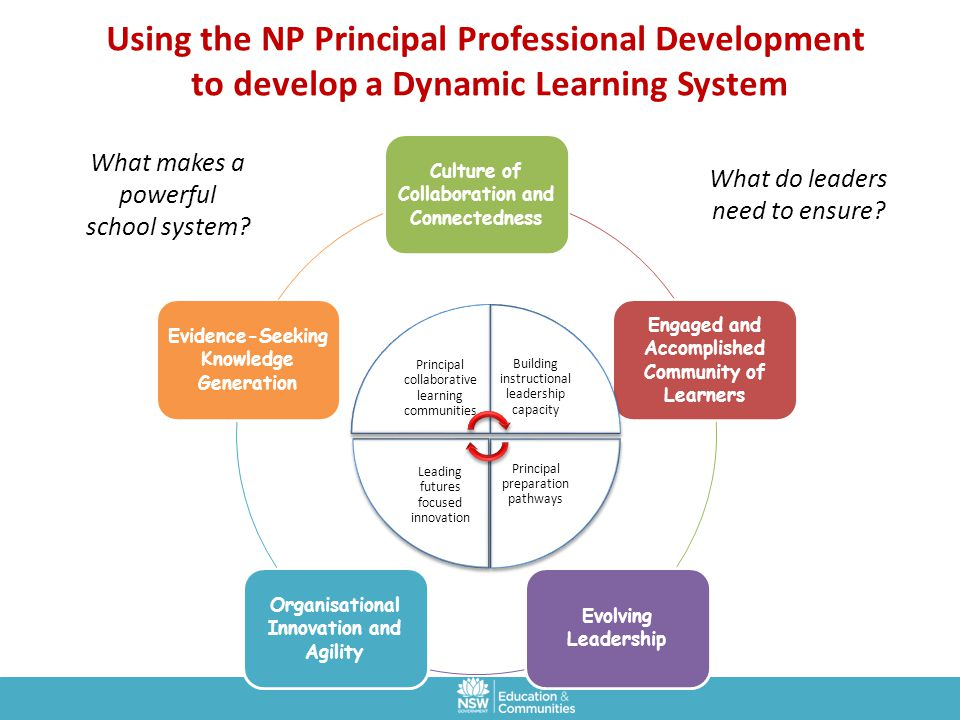 Using the NP Principal Professional Development to develop a Dynamic Learning System