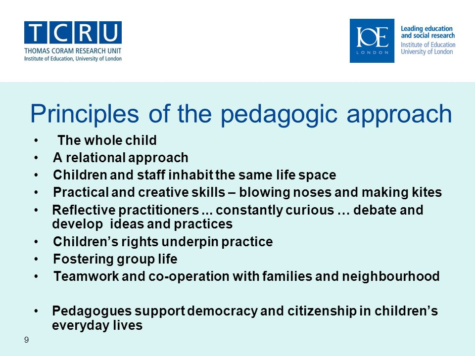 Principles of the pedagogic approach