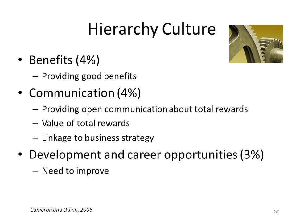 Hierarchy Culture Benefits (4%) Communication (4%)