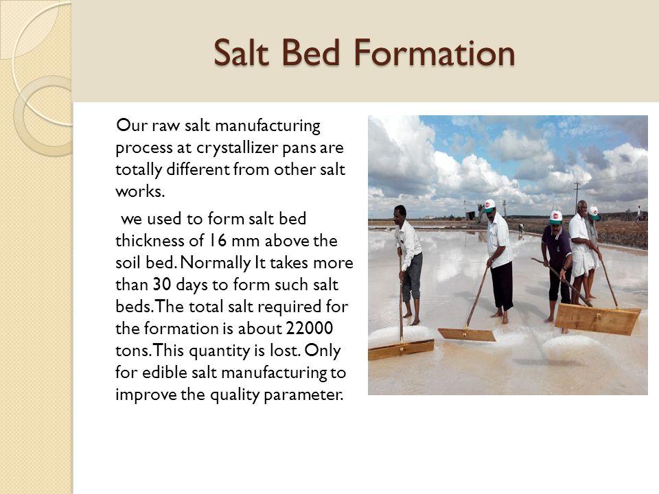 Salt Bed Formation
