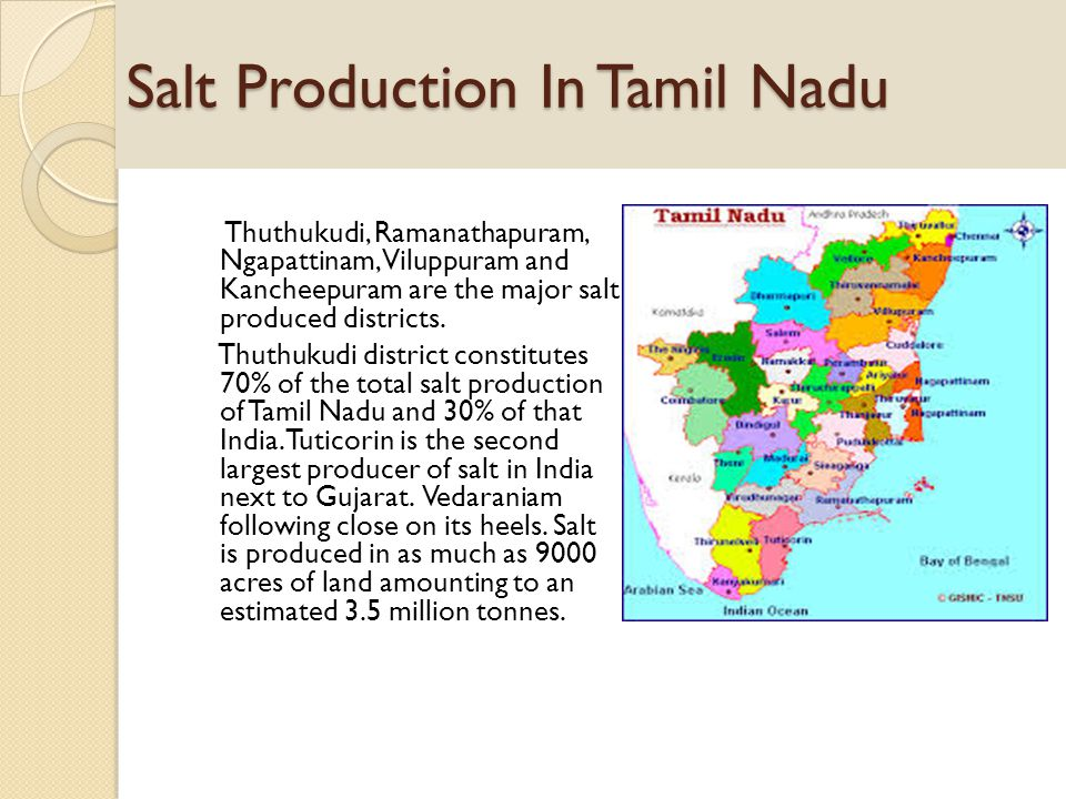 Salt Production In Tamil Nadu