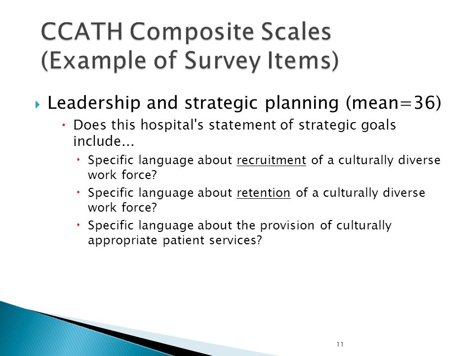 CCATH Composite Scales (Example of Survey Items)