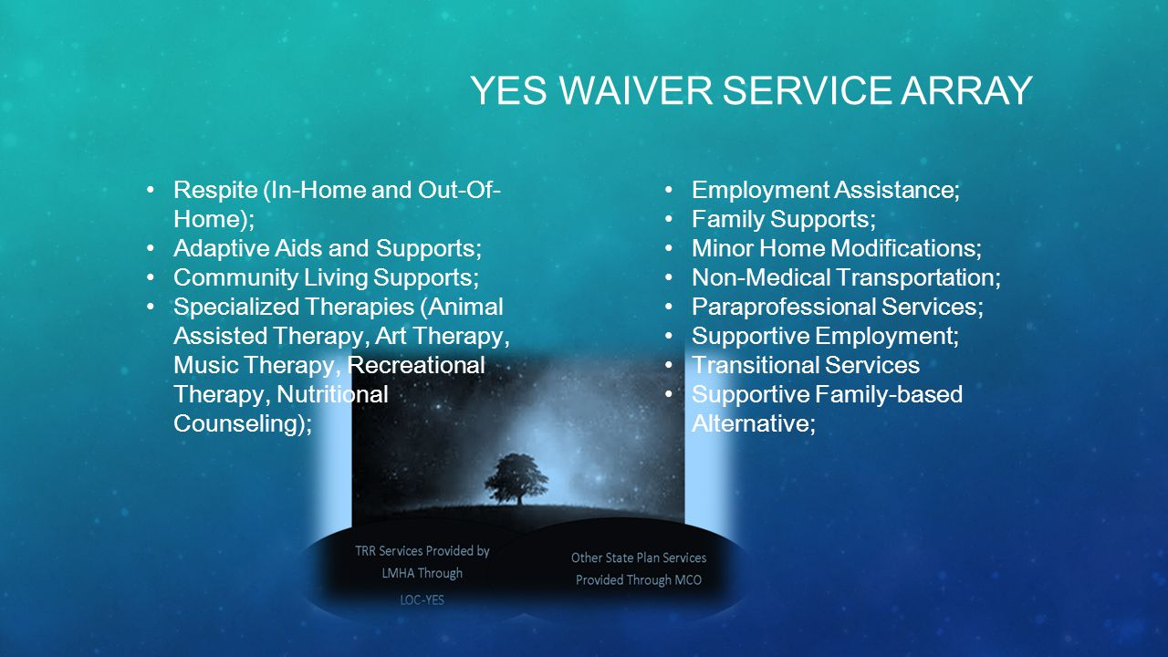 YES Waiver Service Array