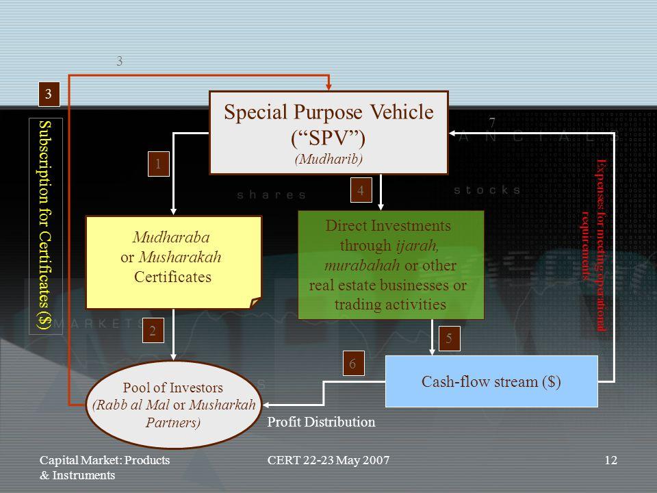 Special Purpose Vehicle ( SPV )