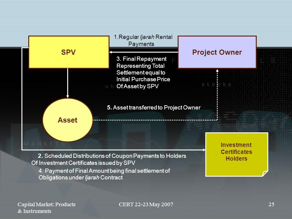 SPV Project Owner Asset