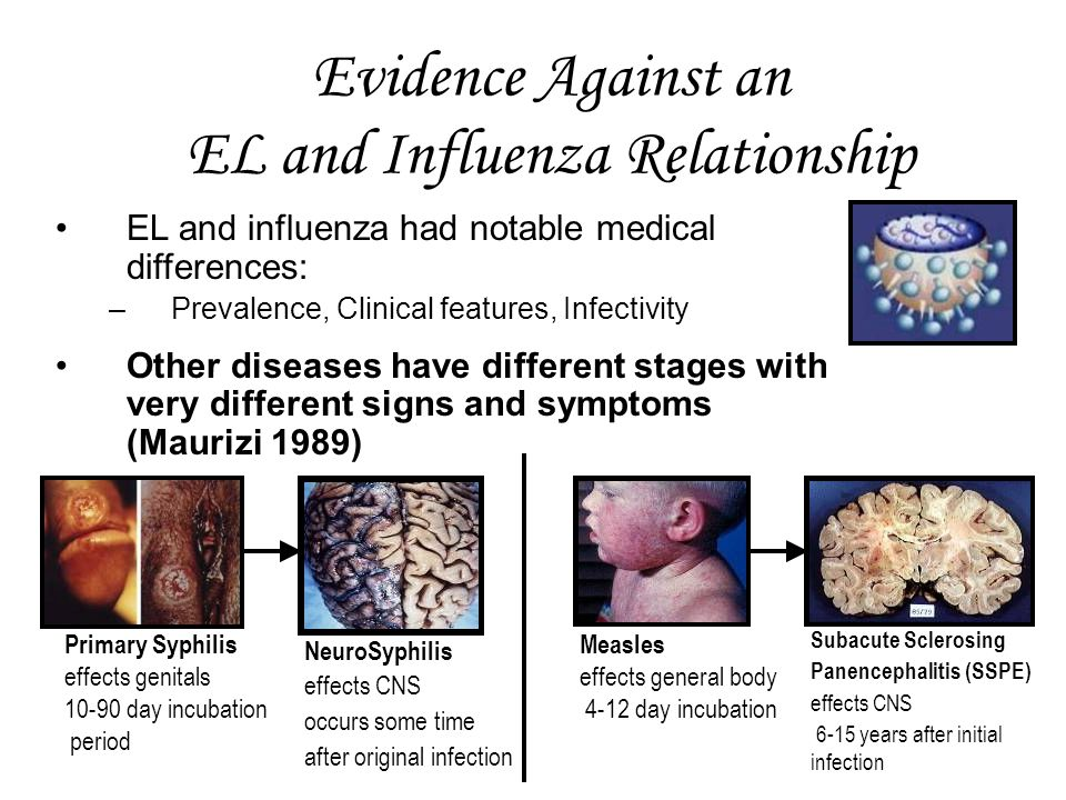 Evidence Against an EL and Influenza Relationship