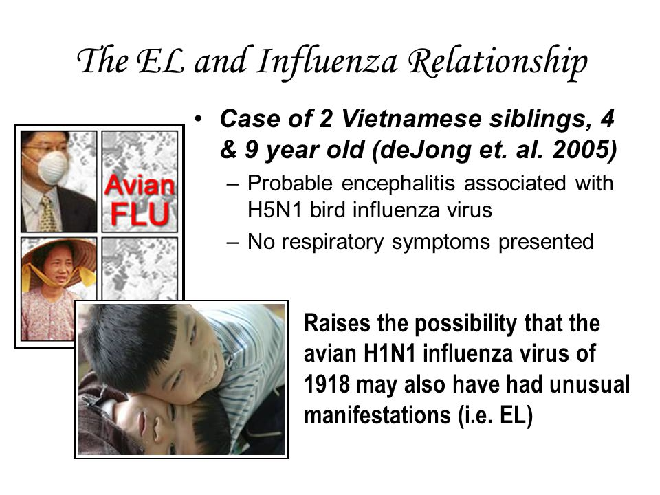 The EL and Influenza Relationship