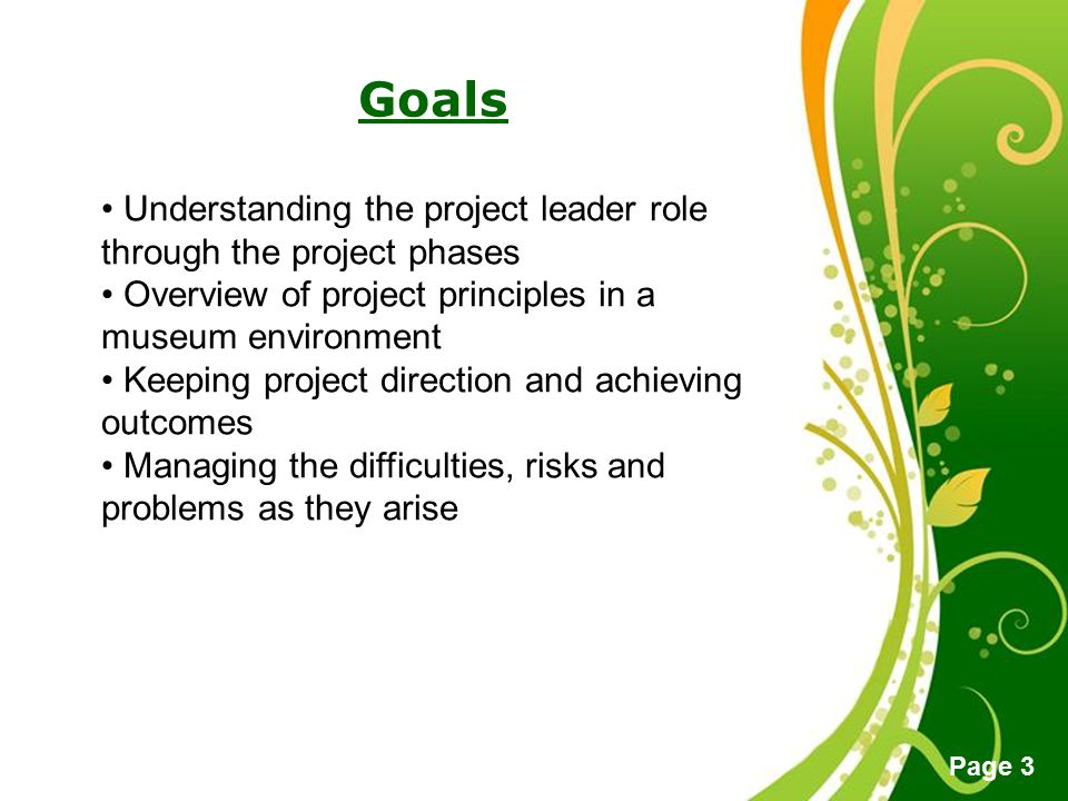 Goals Understanding the project leader role through the project phases