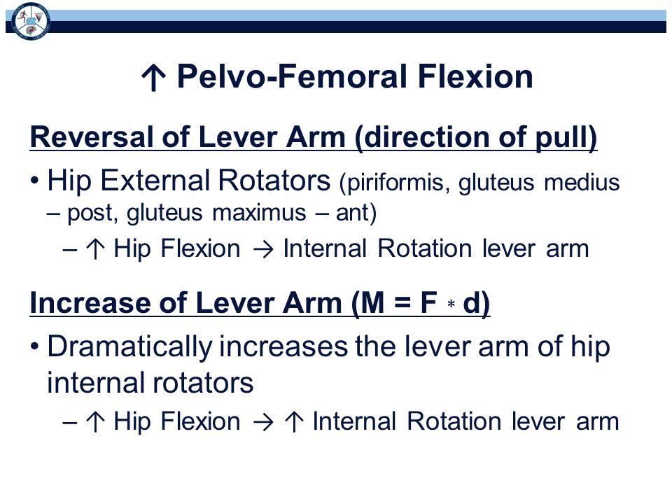 ↑ Pelvo-Femoral Flexion