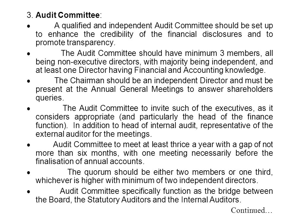 3. Audit Committee: