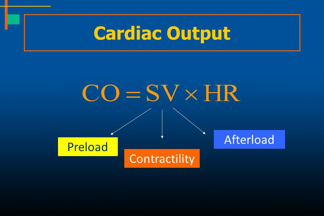 Cardiac Output Afterload Preload Contractility